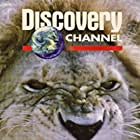Wild Discovery (1995)