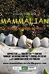 Mammalian (2010)