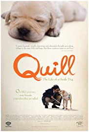 Quill: The Life of a Guide Dog(2004) Poster - Movie Forum, Cast, Reviews
