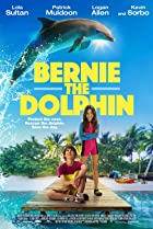 Bernie The Dolphin Poster