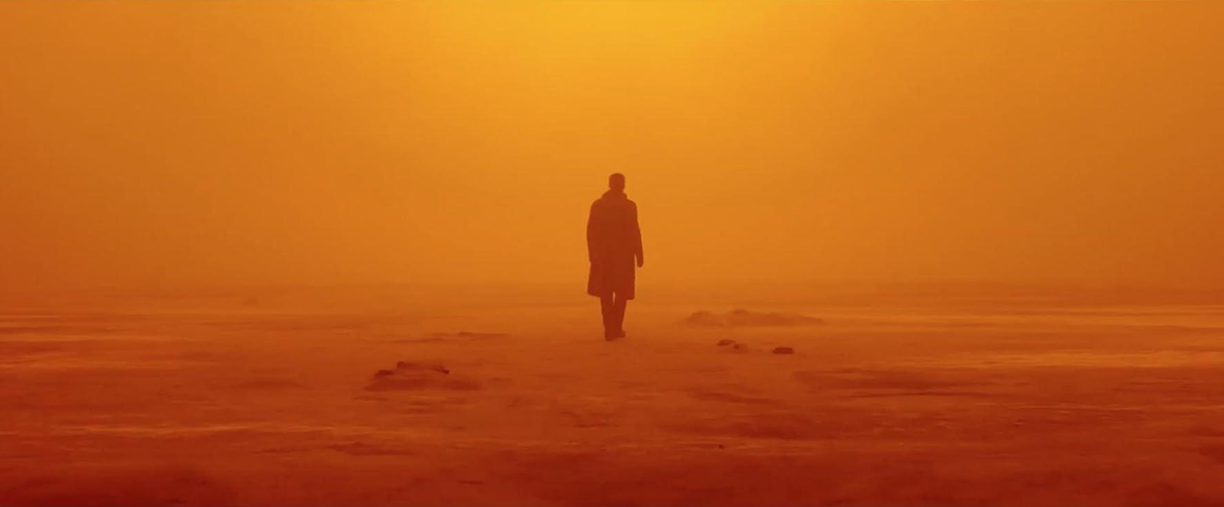 Ryan Gosling in Blade Runner 2049 (2017)