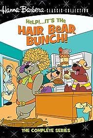 Help!... It's the Hair Bear Bunch! (1971) Poster - TV Show Forum, Cast, Reviews