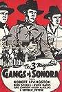 Rufe Davis, Robert Livingston, and Bob Steele in Gangs of Sonora (1941)