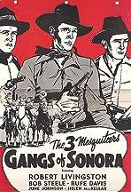 Gangs of Sonora