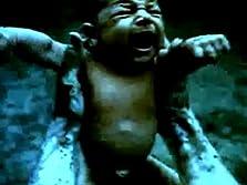 The Grifter (2009 Video)