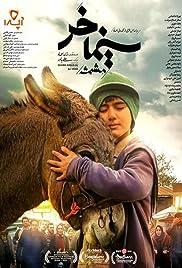Cinema Donkey Poster