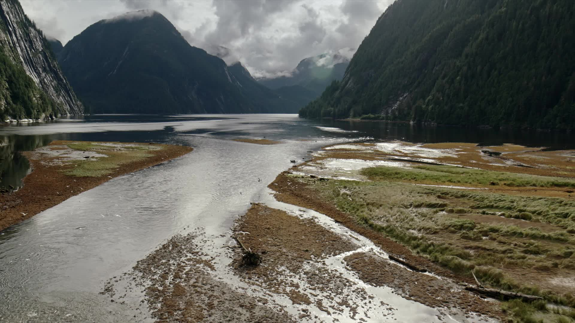 A Giant-Screen Adventure in the Land of the Spirit Bear Great Bear Rainforest