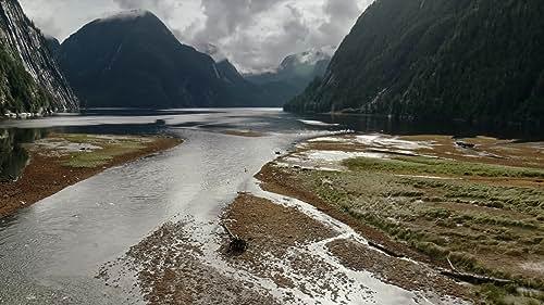 Great Bear Rainforest Official Trailer