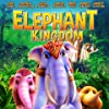 Still Elephant Kingdom
