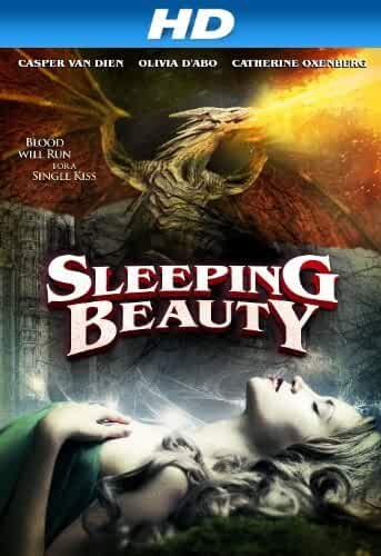 Sleeping Beauty (2014) 720p BRRip x264 [Dual Audio] [Hindi – English]