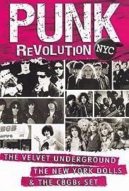 Punk Revolution NYC Poster