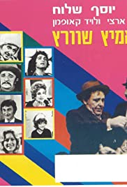 Schwartz: The Brave Detective Poster