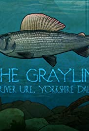 The Grayling: River Ure, Yorkshire Dales Poster