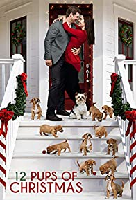 Primary photo for 12 Pups of Christmas