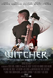 The Witcher (2017)