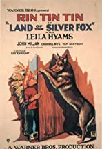 Land of the Silver Fox
