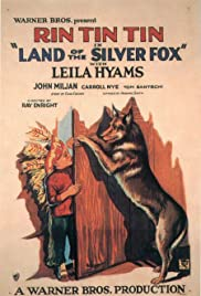 Land of the Silver Fox Poster