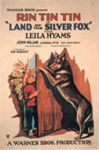 Land of the Silver Fox full movie download 1080p hd