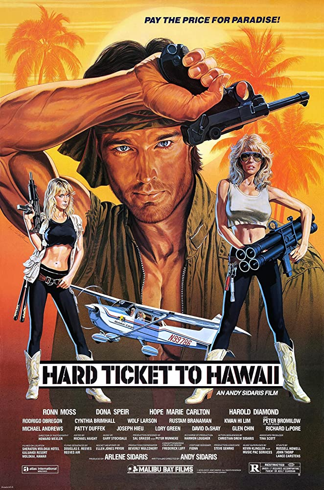 18+ Hard Ticket To Hawaii 1987 UNRATED Hindi Dual Audio 350MB BluRay ESubs