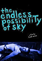 The Endless Possibility of Sky