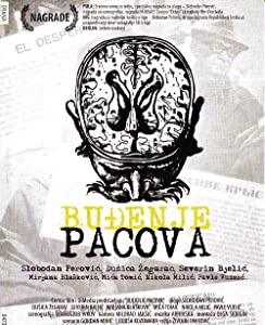 Movie clips free downloads Budjenje pacova by Zivojin Pavlovic [1920x1200]