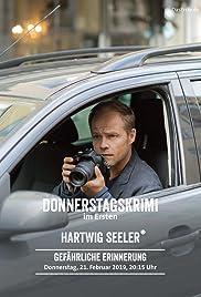 Hartwig Seeler - Gefährliche Erinnerung Poster