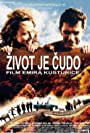 Zivot je cudo (2004)