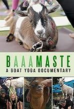 BaaaMaste: A Goat Yoga Documentary