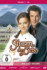 Storm of Love Poster