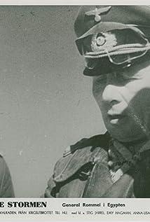 Erwin Rommel Picture