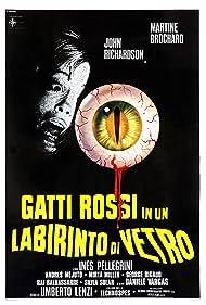 Gatti rossi in un labirinto di vetro (1978) Poster - Movie Forum, Cast, Reviews