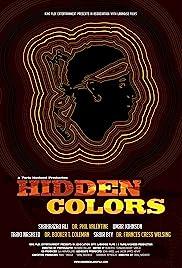 Hidden Colors Poster