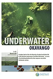 Underwater Okavango Poster