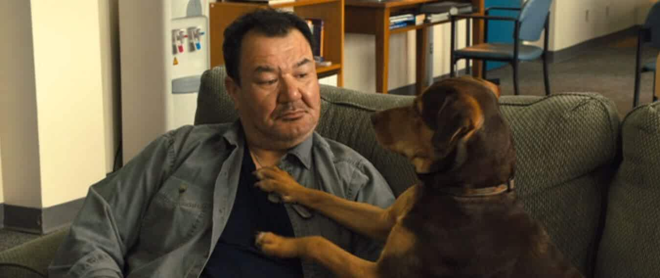 A Dog's Way Home (2019) Full Movie Download In Hindi