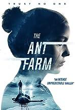 The Ant Farm