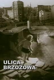 Ulica Brzozowa (1947)