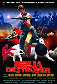 Ninja Destroyer Poster