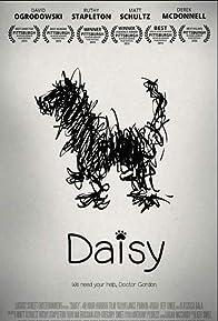 Primary photo for Daisy (VI)