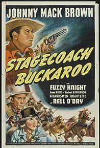 Primary photo for Stagecoach Buckaroo
