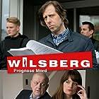 Wilsberg (1995)