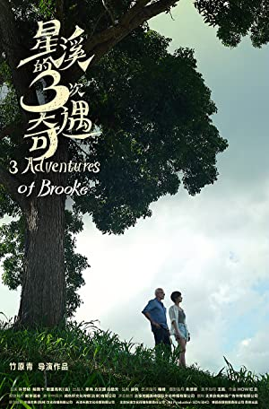 Three-Adventures-Of-Brooke-2018-720p-WEBRip-YTS-MX