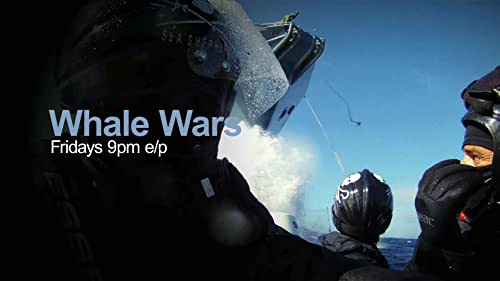 Whale Wars: Fridays At 9Pm