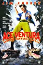 Ace Ventura: When Nature Calls (1995) Poster