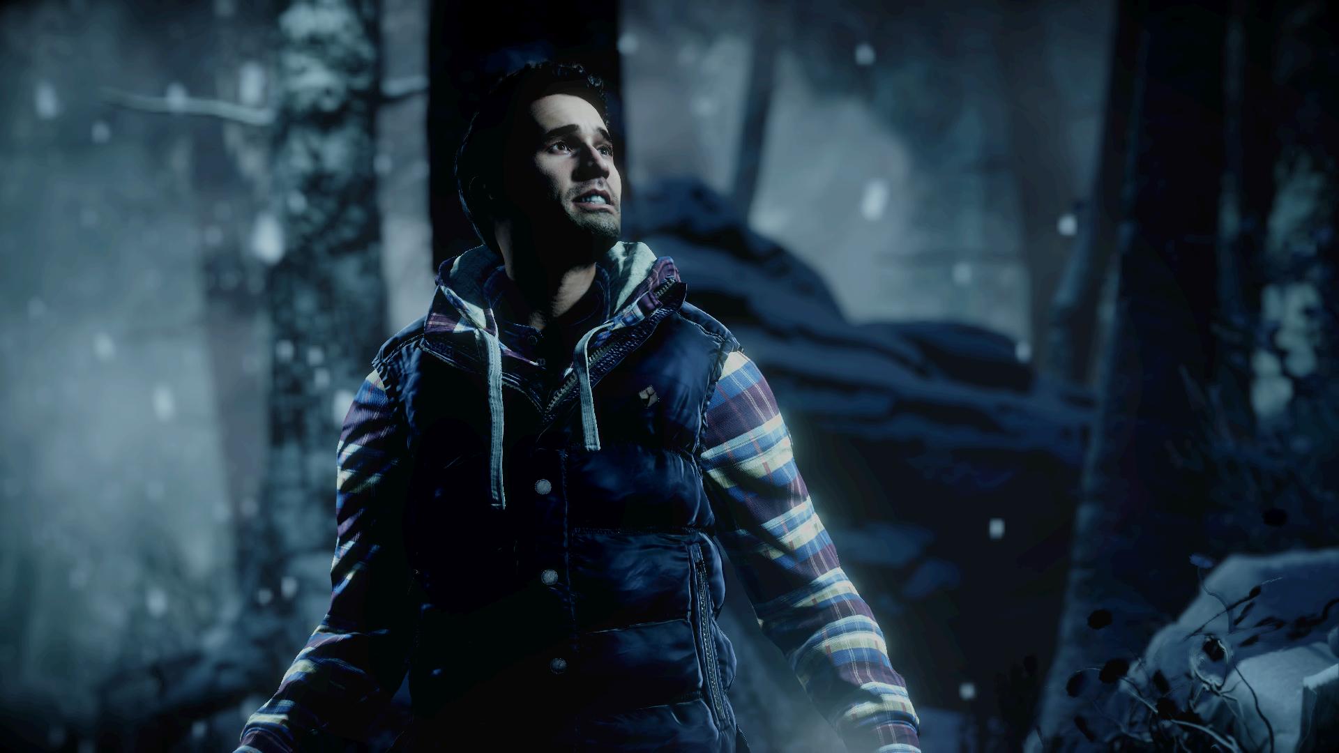 Until Dawn (Video Game 2015) - Photo Gallery - IMDb