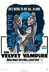 Primary photo for The Velvet Vampire