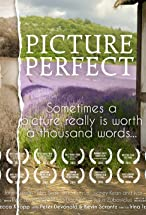 Primary image for Picture Perfect
