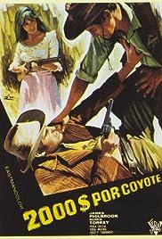 Django, a Bullet for You Poster