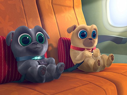 Puppy Dog Pals Hawaii Pug Oh A R F Tv Episode 2017 Imdb