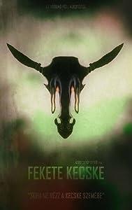 Downloadable short movies Fekete Kecske [1280x800]