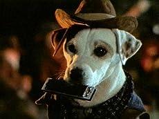 Wishbone: Dog Days of the West